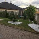 045 - Borovice lesní - Písek