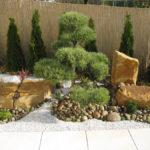 Borovice v okrasné zahradě - 2
