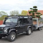 Doprava tvarovaných stromů - 03