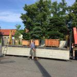 Doprava tvarovaných stromů - 07