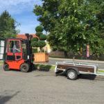 Doprava tvarovaných stromů - 08
