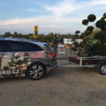Doprava tvarovaných stromů - 11