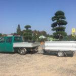 Doprava tvarovaných stromů - 14