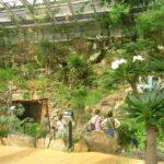 Skleník Fata Morgana v Pražské botanické zahradě (foto: Packa)