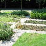 Bylinková zahrada (foto: KVDP)