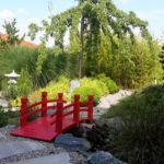 Kryptomerie v japonské zahradě - 1 (foto: Irena Fleissigová, Nový Šaldorf)