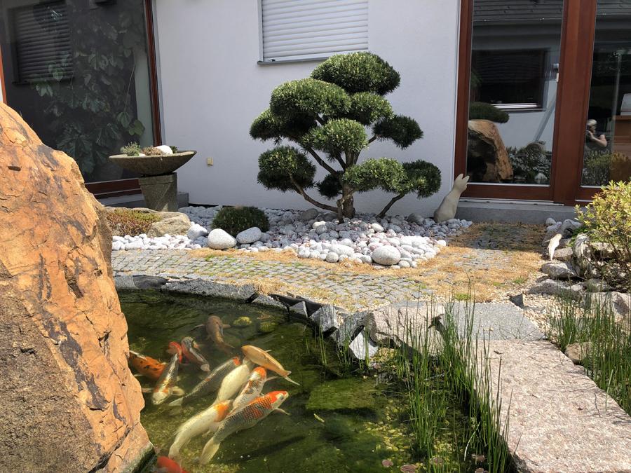 Okrasná zahrada - Šestajovice