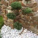 Okrasná zahrada Podlesí - 13