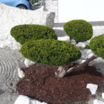 Okrasná zahrada Znojmo - 10