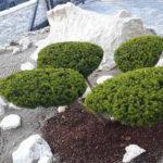 Okrasná zahrada Znojmo - 11