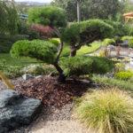 Okrasná zahrada Znojmo - 31