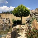 Okrasná zahrada ve Starém Podlesí