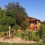 Okrasné jehličnany v zahradě - 2