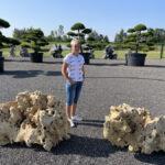 Okrasné solitérní kameny Impeka - 04