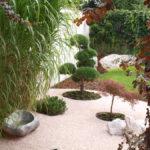 Solitérní stromy v okrasné zahradě - 02