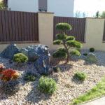 Solitérní stromy v okrasné zahradě - 09