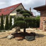 Solitérní stromy v okrasné zahradě - 01