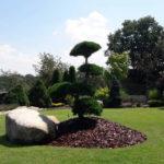Solitérní stromy v okrasné zahradě - 16
