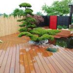 Tvarované stromy - niwaki - 2