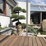 Tvarované stromy - niwaki - 5