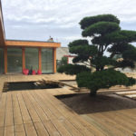 Výsadba tvarovaných stromů - 06