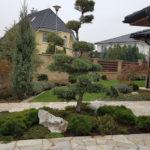 Výsadba tvarovaných stromů - 15