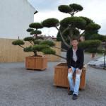 Zahradní bonsaje - IMPEKA