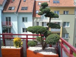Výzdoba terasy domu v Brně