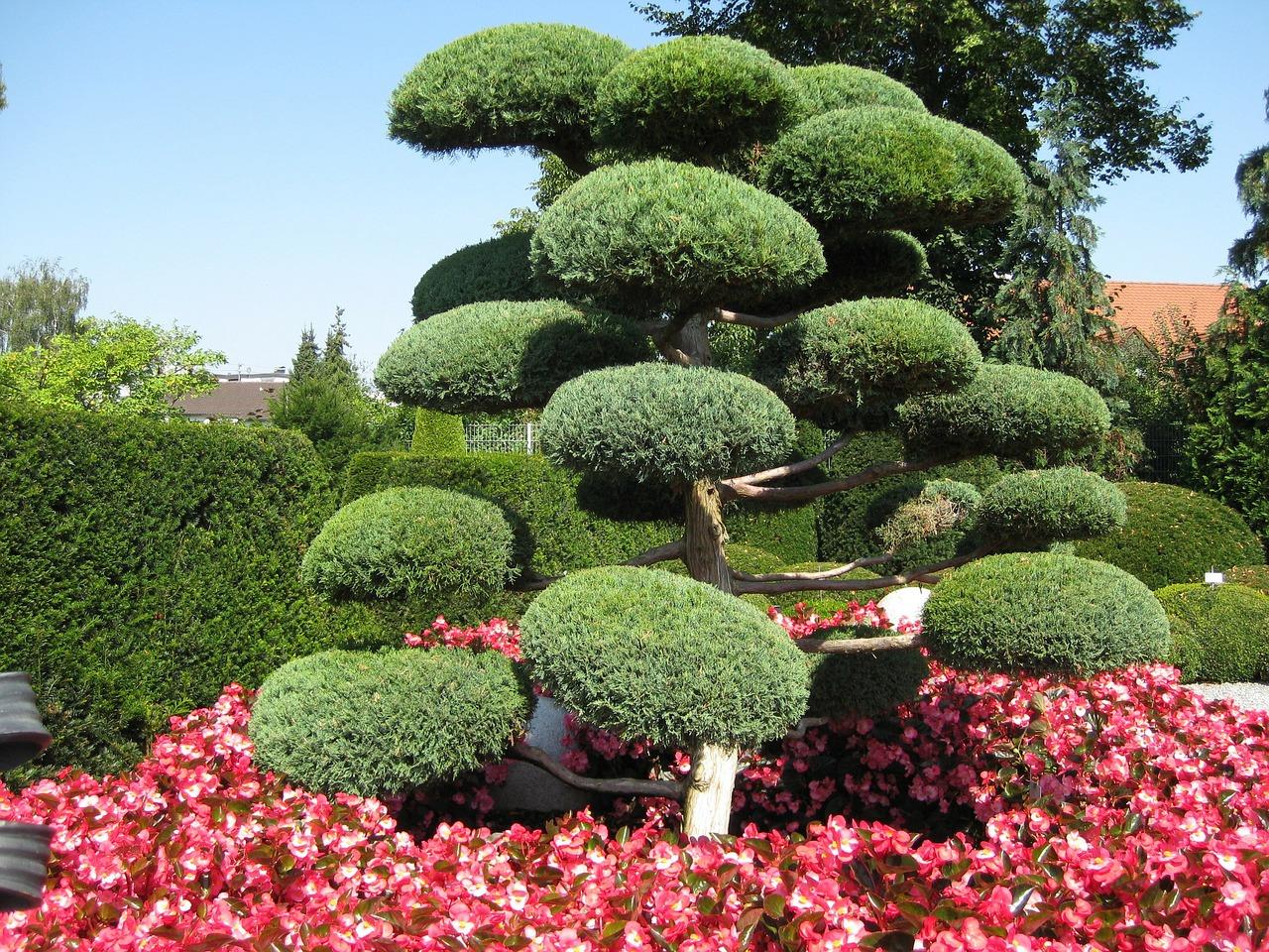 Japonsk zahrada 3 smysl a rozd len japonsk ch zahrad for Pflanzen japanischer garten
