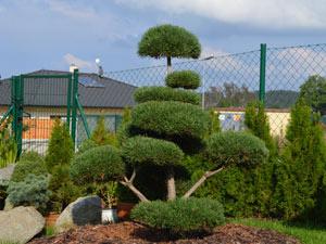 Okrasná zahrada v příbrami