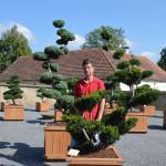 showroom okrasných stromů 14